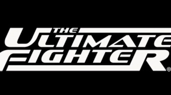 The Ultimate Fighter 25 Finale: Johnson vs. Gaethje